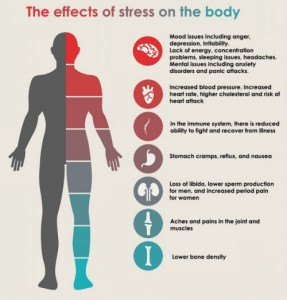 effects-of-stress-on-body